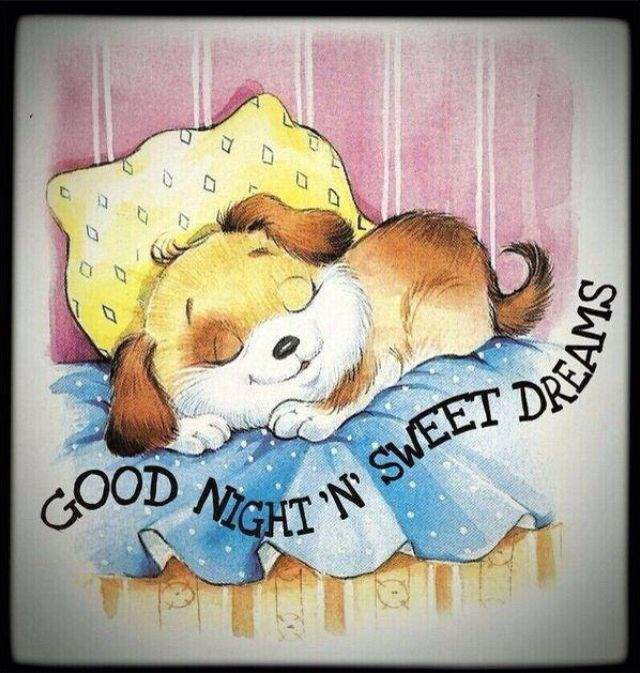 As you always have a dream, may tonight your dream as sweet as you hehehe