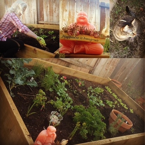 Large Redwood Planter Box For Tomatoes: WoodWorking Projects & Plans