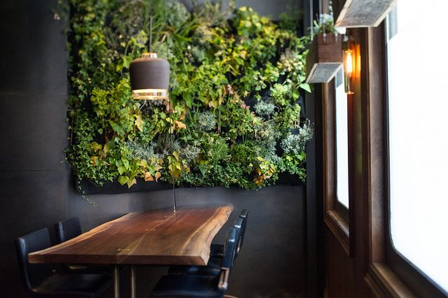valscrapbook:    elorablue:Atera, New York by smoothdude on Flickr.: Wall Art, Dining Rooms, Living Wall, Green Wall, Wood Tables, Vertical Gardens, Gardens Wall, New York, Wall Gardens