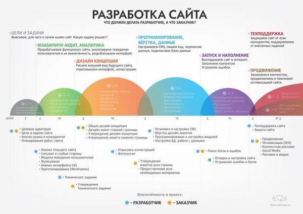 Инфографика - план работ по разработке сайта.