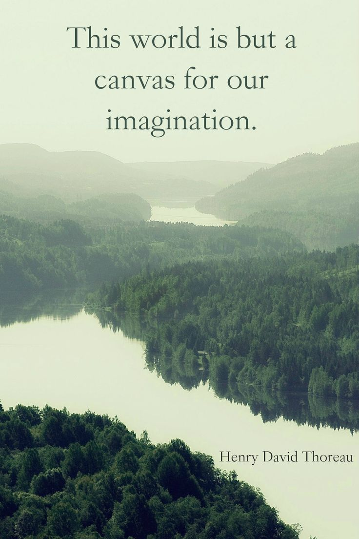 Best 25+ Thoreau Quotes ideas on Pinterest