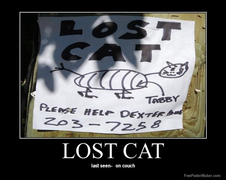 Leland makes a Lost Cat poster to help find Pumpkin. A neighbourhood artist appreciates how he mixed the colours.