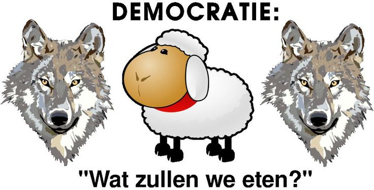 Citaten Democratie : Een cartoon over democratie en het stemmen joeri