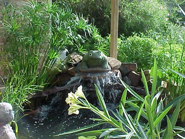 17 best images about fish ponds on pinterest gardens for Best fish pond pump