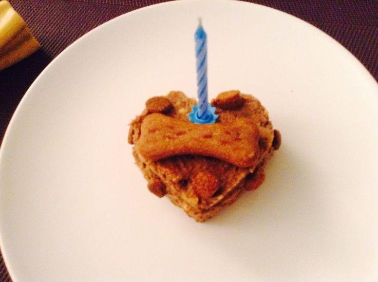 Mini torta di compleanno per cani: un idea veloce e simpatica per festeggiare l amico a quattro zampe! Mixare crocette per cani,  una banana matura, biscotti per cani e un goccio d'acqua calda se risultasse troppo asciutta. Happy B day