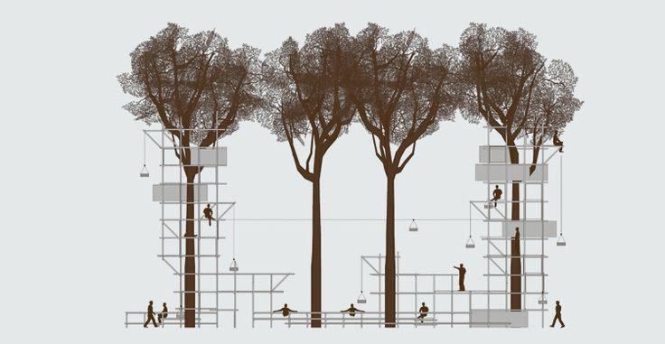 Best 25 Tree Structure Ideas On Pinterest Structure C