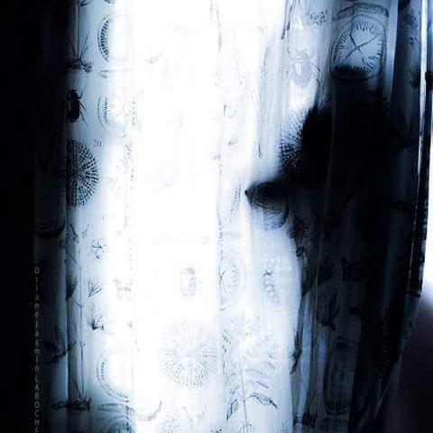 DAWN By Oriane Lee jasmin  #model #frenchgirl #frenchmodel #artsoul #art #artbylemoutonnoir #darksoul #nudeart #abstractart #modelling #shootingoftheday #photoshooting #photography #photographie http://tipsrazzi.com/ipost/1506375154510606614/?code=BTnuDjPFDEW