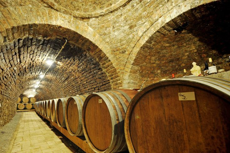 Hungary has been famous for its red and white wine and it's wine-growing region's since ancient times. Wine-tasting is also a tradition that has roots in the very distant past. If you are about to try out the best white or red wines you can have various choices here. In case you have a bit longer time than the average tourist it's recommended to go to the countryside and check out the wine-growing region is there.