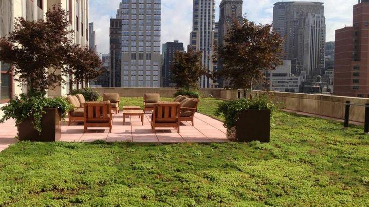 En el Empire State,el edificio más emblemático de Estados Unidos,se inauguraron en el año 2013 cuatro jardines queabarcan 920 metros cuadrados.