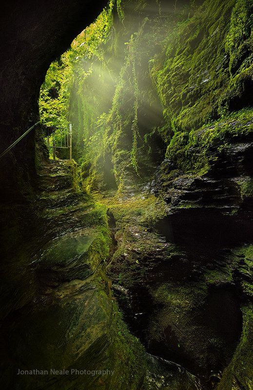 lydford gorge, dartmoor #nature