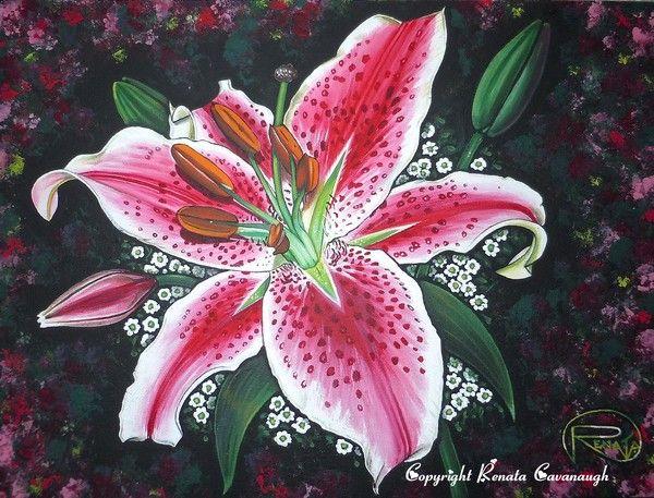 Stargazer Lily by Renata Cavanaugh on ARTwanted