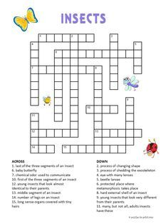 Print out our free insect crossword puzzle for kids and you will have an instant educational and fun activity for your students or our children.