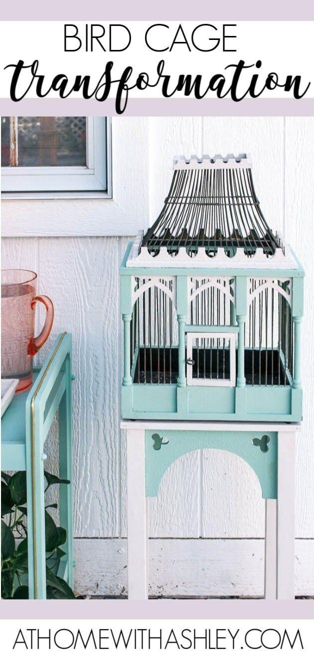 Bird Cage Transformation | Top Blogs - Pinterest Viral Board