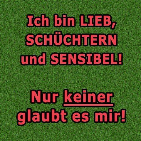 #ausrede #witzigebilder #humor #schwarzerhumor #lustigesding #love #fail #geil #lustigesbild #funnypictures #werkennts
