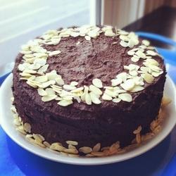 Vegan Choc Cake