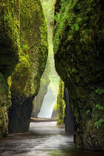 Oneonta Gorge, Oregon, USA