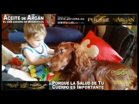 """""""Masaniello & Helmut"""" - PERZEKE Aceite di ARGAN - YouTube"""