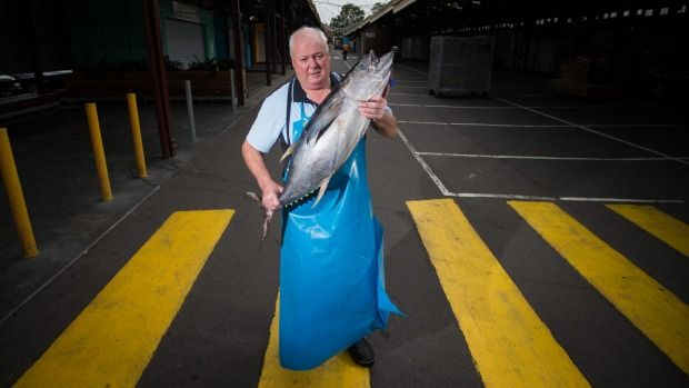 Queen Victoria Market traders are worried their family-owned businesses will be threatened by plans to open the precinct day and night, seven days a week.