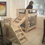 Etagenbetten für Hunde mit Paletten!                                                                                                                                                                                 Mehr