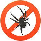 """Anti-Spin gevelbehandeling  Twee opties om schade en verontreiniging door spinnen aan uw woning of pand te voorkomen: 1. Plaats bordjes: """"verboden voor spinnen""""     2. Of een Anti-Spinnen gevelbehandeling met 12 maanden garantie (2 behandelingen per jaar). Met onze behandeling blijven uw kozijnen en schilderwerk beschermd. Het product wat wij gebruiken is biologisch afbreekbaar en niet giftig."""