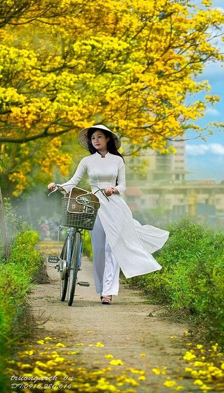 Ao Dai Vietnam