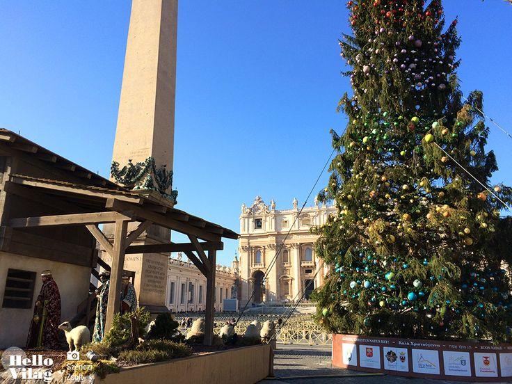 A fát december 8-án díszítették föl a Szent Péter téren, ám ünnepi fényeit december 18-án délután fél 5-kor gyújtják meg. 2015-ben előszőr nem csak a Vatikán díszei kerülnek a fára, hanem az olaszországi gyermekkórházak rákos betegei által készített díszek is.