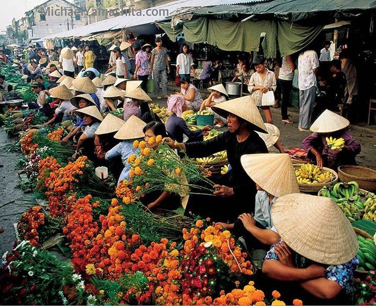 Vietnamese love for flowers is evident in this market in Can Tho, Mekong Delta, Vietnam. Photograph by Michael Yamashita