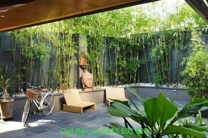 small courtyard tropical gardens - Google Search