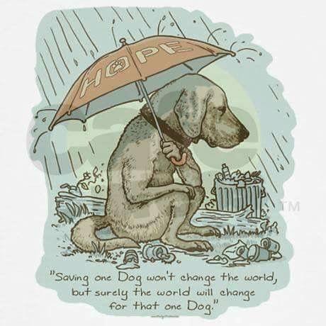 """Saving one ❤ dog won't change the world, but surely the world will change for that one dog."""
