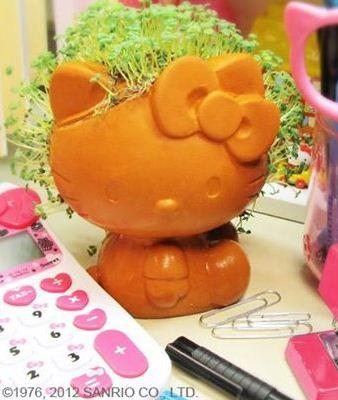 1000 images about hello kitty san on pinterest hello kitty