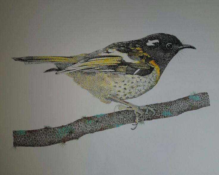 Pointillism drawing of a New Zealand Stitchbird or Hihi  bird art by @kristin.ivill.art