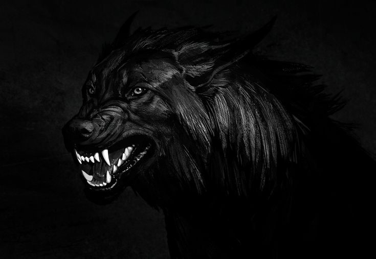beast wolf wallpaper art - photo #14