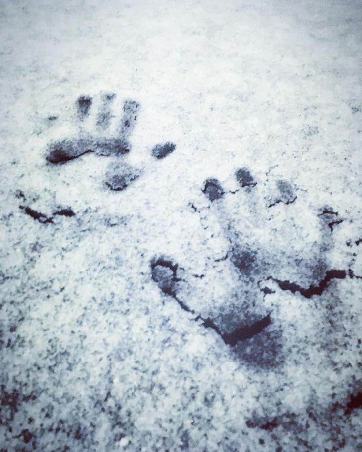 Impronte. #mani #snow #snowwhite #whitesnow #neve #impronte #tracce #winter #gravinainpuglia #gravina #snow