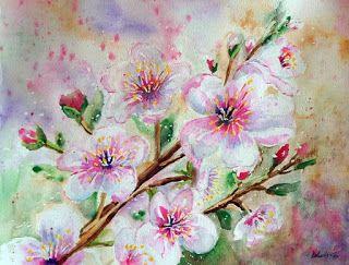 Galéria Kika: Kvety jablone / Apple Blossom