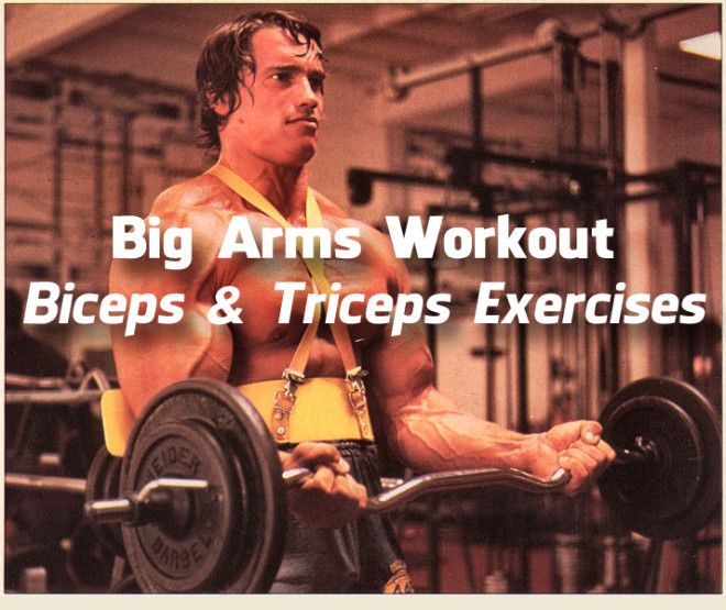 Big Arms Workout: Biceps & Triceps Exercises (Video) | Gym Flow 100