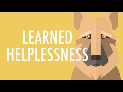 What is Learned Helplessness?                                                                                                                                                                                 More