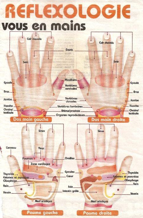 zones de reflexologie palmaire, plantaire et faciale.