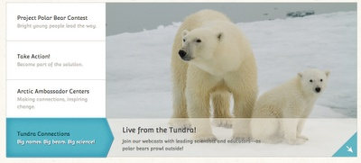 Take Your Students on a Virtual Tour of the Tundra to Learn About Polar Bears