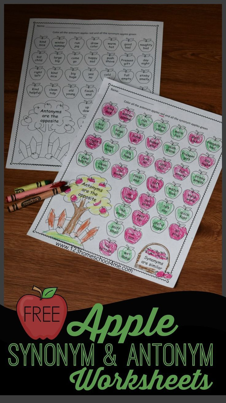 small resolution of FREE Apple Synonyms and Antonyms Worksheet   Antonyms worksheet