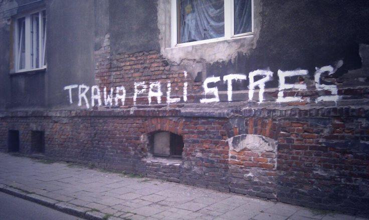 Ulica prawdę Ci powie. #katowice #bogucice