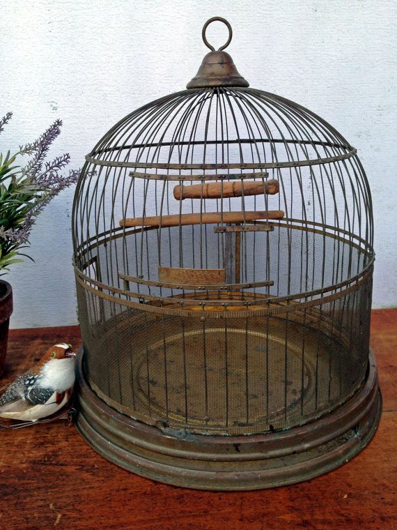 Old Hendryx Bird Cage 1920s Brass Search Birds And
