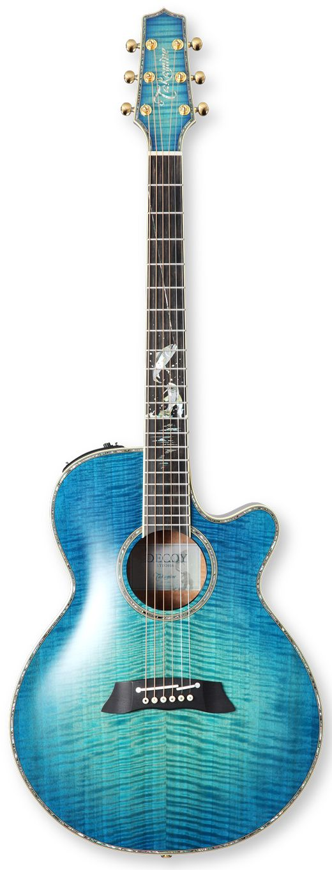 Takamine LTD2016 DECOY - The Hardest Working Guitar