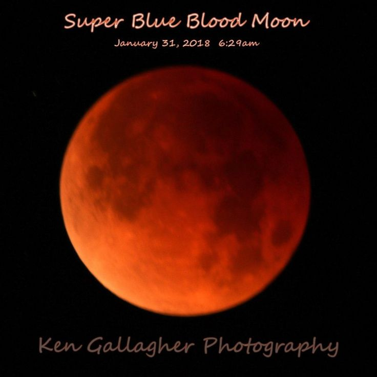 It was a Blue Moon, a supermoon and a moon in total eclipse. EarthSky community members around the world came through as always with awesome photos.