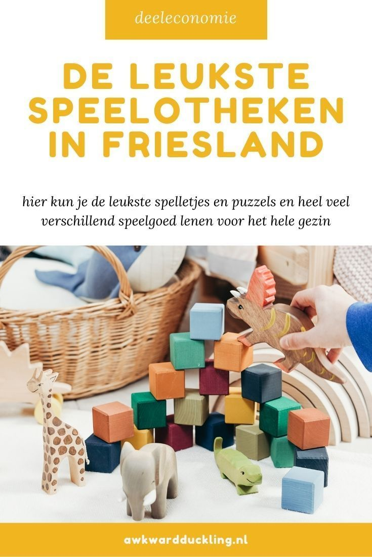 Speelotheken in Friesland Awkward Duckling
