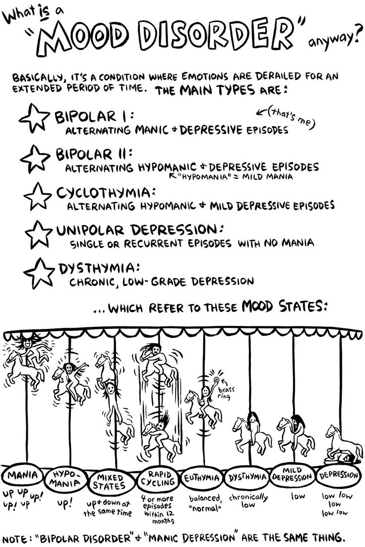 "Artist Ellen Forney ""I've heard from a lot of readers that the carousel metaphor has really clarified the different mood states for them. It's really satisfying when you're trying to explain something, and a metaphor that makes sense to you also works for someone else. I was originally going to draw a swing -- you know, ""mood swings"" -- but side-to-side didn't work, I needed up-and-down."""