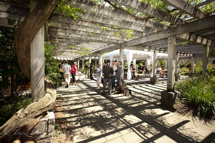 13 Best Images About Leu Gardens Weddings On Pinterest: 13 Best Images About Wisteria Hall