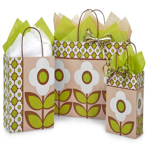 Paper Shopping Bags Printed Geo Garden - with Brown Twine Handles – B2BWraps.com