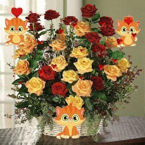 Gif animado de un ramo de rosas para mandar por whatsapp. Puedes descargar estas lindas imagenes con movimiento de ramos de rosas para que se las regale a una mujer especial en tu vida, aprovechand…