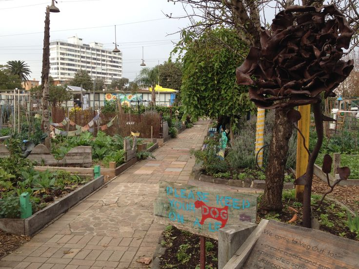 """Veg Out - Community Garden in St Kilda """"gardening is an act of faith in the future"""""""