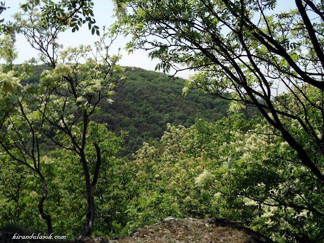 Kirándulások - természetjárás: Biatorbágy, a Négyes-szikla